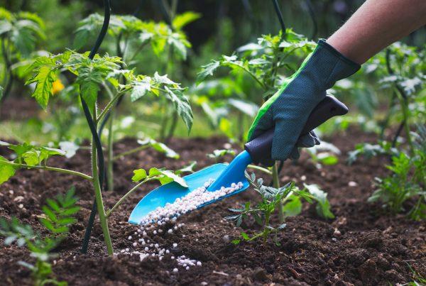Enmiendas y fertilizantes